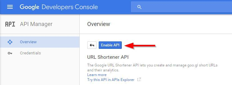 Google URL Shortener API KEY 4